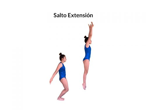 MEP-Slider-7.Salto extension